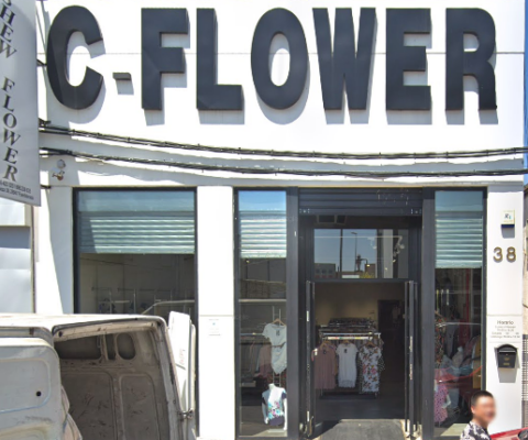 CASHEW FLOWER MAYORISTA ROPA MUJER
